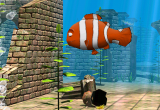 3D Funny Fish Screensaver 1.19 poster