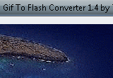 Gif To Flash Converter 1.6 poster