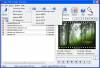 Amor SWF to Video Converter 3.0.0.1 image 2
