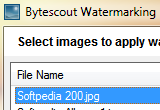 Bytescout Watermarking PRO 3.00.210 poster