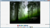 FLVPlayer4Free Free FLV Player 6.0.0.0 image 0