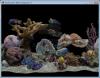 Marine Aquarium 3.0 image 0