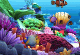 Marine Life 3D Screensaver 1.0 poster