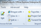 Offline Explorer Enterprise 6.8.4058 poster