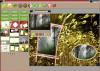 Photo Collage Master 4.0 image 0