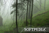 Softpedia Wallpaper Pack 7 poster